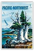 太平洋岸北西部 - グレイハウンド - ビンテージな世界旅行のポスター によって作成された S.フレミング c.1958 - アートポスター - 33cm x 48cm