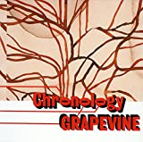 プラチナムベスト GRAPEVINE~Chronology-a young persons' guide to Grapevine-(UHQCD)