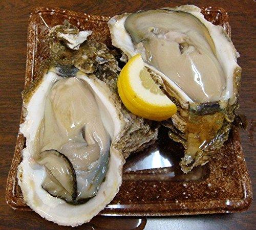 奥伊勢産 天然岩牡蠣大 生食可 5個入りセット
