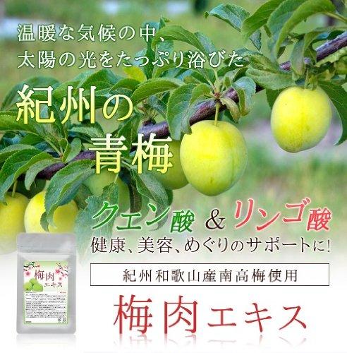 梅肉エキス (約6ヶ月分/180粒) 紀州産南高梅を厳選使用 クエン酸やリンゴ酸も配合