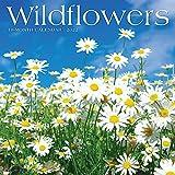 Wildflowers 2022 Wall Calendar