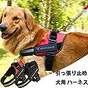 猫用 ハーネス 超小型犬 仔犬用 ペット牽引ロープ ハンドル付き リード 散歩が楽しくなる選べる 吸汗速乾 首輪 胴輪 簡単脱着式 反射材料 ブラック XS