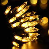 Recesky Christmas String Lights with Timer - 50 LED 19ft Fairy Battery Operated Mini String Light for Outdoor Indoor Garden P