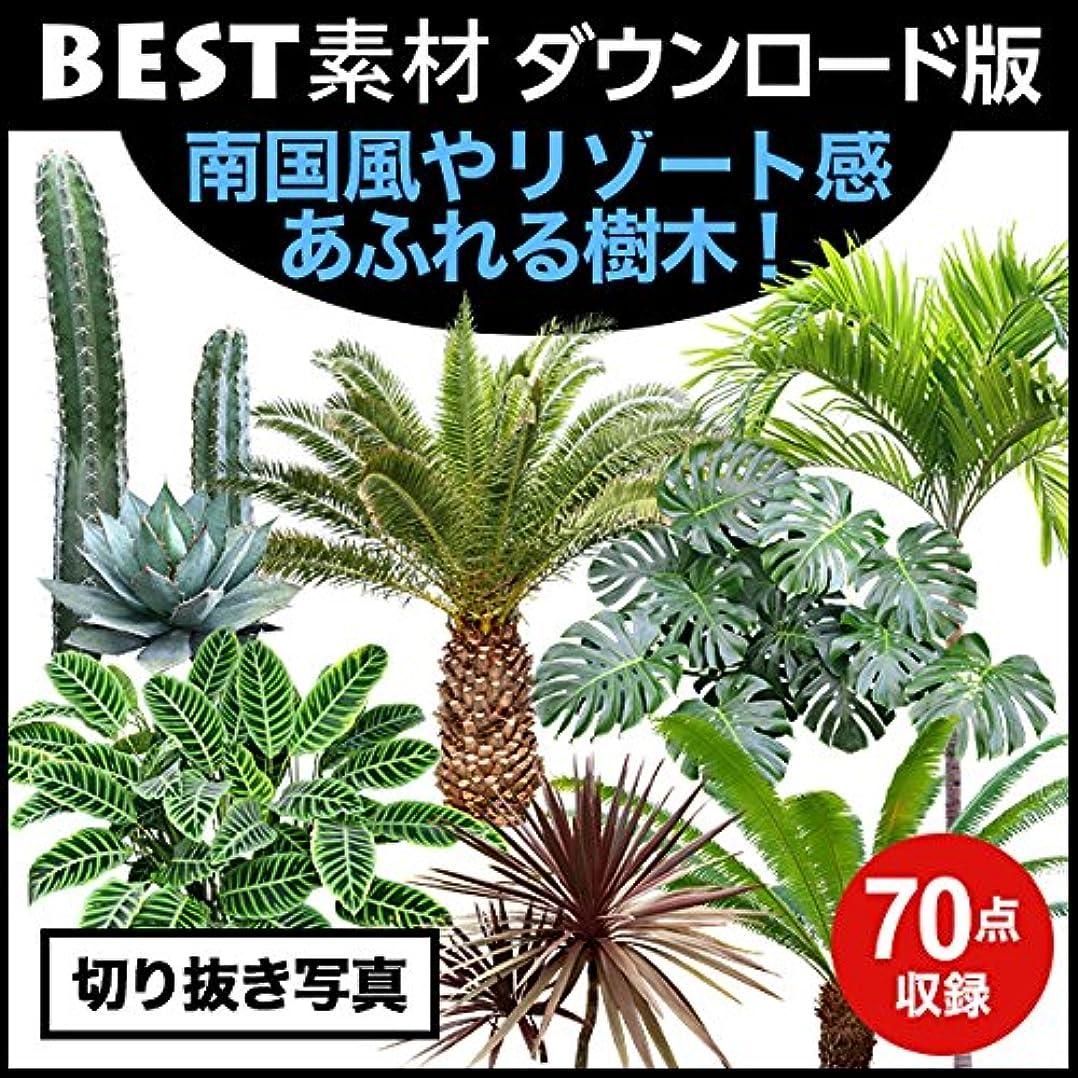 耐える閉塞ハウジング【BEST素材】南国風やリゾート感あふれる樹木! (Mac)|ダウンロード版