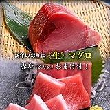 【31日16時までの購入で、1月1日お届け】生おせち 海鮮づくし 二段重 生マグロ赤身のおまけ付 2~3人前