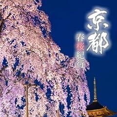 京都 春桜紀行 京都四季紀行