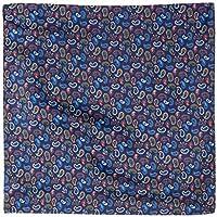 Van Heusen Men's Pocket Square Blue Paisley, Blue, One Size