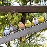 ガーデニング 小鳥 オブジェ 置物 庭 飾り 6匹 セット