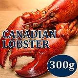 カナダ産加熱済みオマールロブスター300g(オマール海老)【冷凍】【塩水チューブ】【グルメ通販】