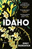 Idaho: A Novel (English Edition)