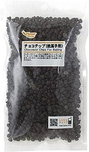 パイオニア企画 チョコチップ焼き菓子用(225g×1袋)