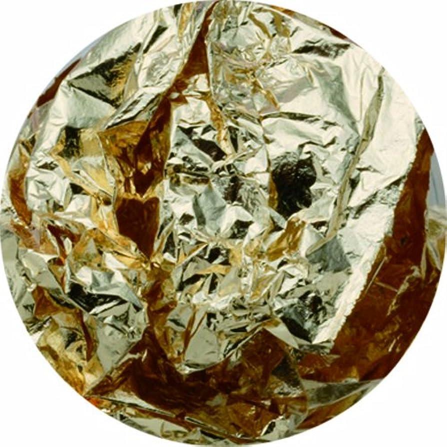 ミス白鳥減少ビューティーネイラー ネイル用パウダー 黒崎えり子 ジュエリーコレクション ゴールドホイル