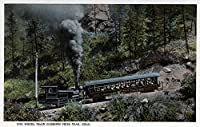 Pikes Peak、コロラド – Cog Wheel Train Climbing Up 16 x 24 Giclee Print LANT-10788-16x24