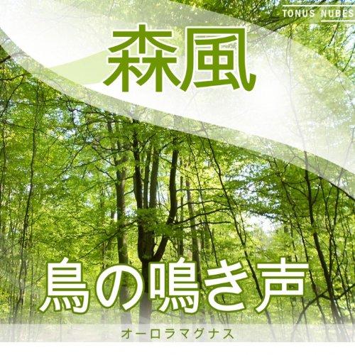 鳥の鳴き声 - 森風 (リラクゼーション、ヒーリング、瞑想の...