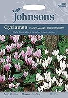 JOFL 英国ジョンソンシード Cyclamen hederifolium シクラメン・ヘデリフォリウム=ネアポリタナム