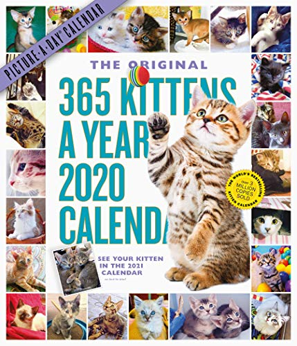 365 Kittens a Year Picture-a-Day 2020 Calendar