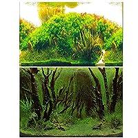 40x62cm 水族館ポスター 3D効果 バックスクリーン 水草 両面壁紙 水槽の背景 水槽の飾り