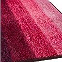 Arie(アーリエ) 吸水キッチンマット グラデーション 45×240cm ピンク