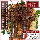 三重県産 伊勢海老詰合せ 3尾で約750g 刺身用瞬間冷凍 伊勢エビ 尾数選べます