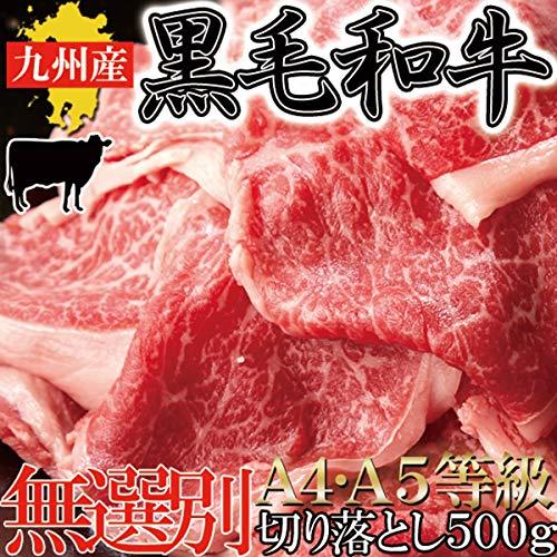 九州産黒毛和牛A4・A5等級【無選別】切り落とし500g 冷凍 枝豆1kgセット