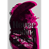Never ending dream -hide story-