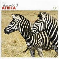 New World Africa 1