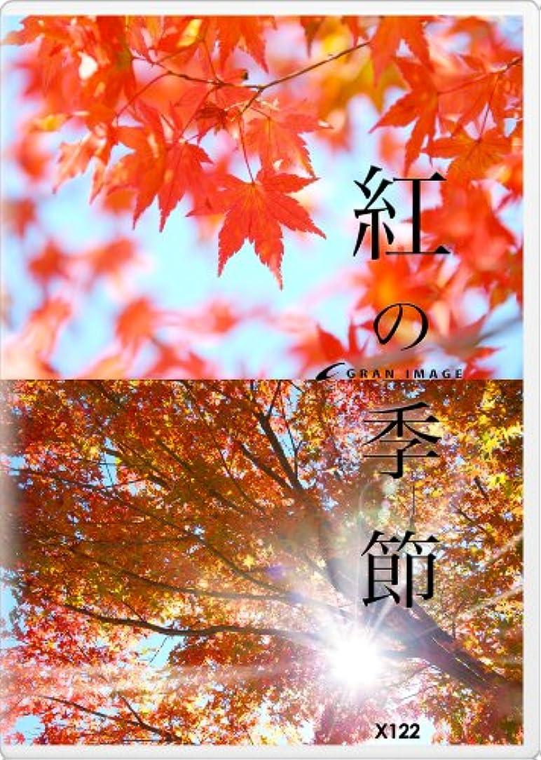 朝ごはんブレイズリスキーなグランイメージ X122 紅の季節(ロイヤリティフリー写真素材集)