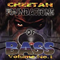 Foundations of Bass
