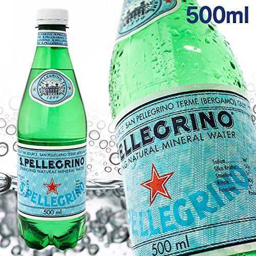 サンペレグリノ 炭酸水 PET 500ml×24本