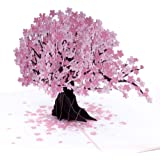 Paper Love Cherry Blossom Pop Up Card, 3D Popup Greeting Cards, for Mothers Day, Spring, Fathers Day, Graduation, Birthday, W