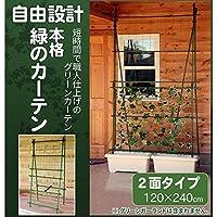自由設計 本格 緑のカーテン グリーンカーテンキット 2面タイプ 120×240cm
