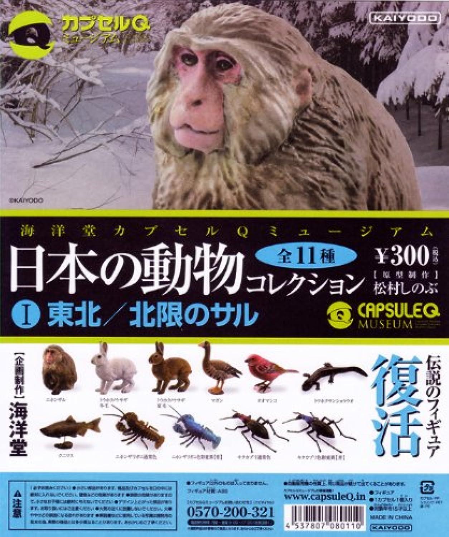 日本の動物コレクションI 東北/北限のサル カプセルQミュージアム ガチャ 海洋堂 (ノーマル11種セット)