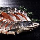 紅鮭 姿切り身 北海道加工 ロシア産 天然 鮭 切り身 (1切真空)
