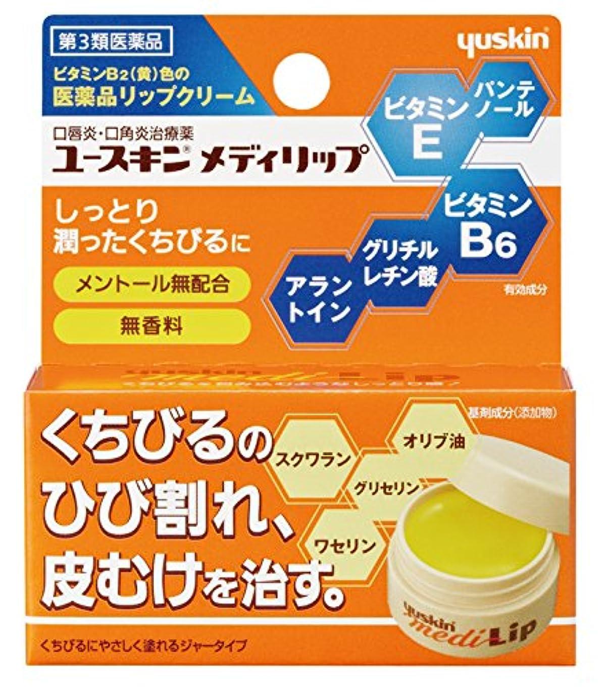 汚染する感嘆符研磨【第3類医薬品】ユースキン メディリップ 8.5g
