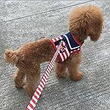 お散歩グッズ 犬用首輪 犬用胴輪  犬 ハーネス ペット用品 ハーネス お散歩 お出かけ 調節可能  小型犬  中型犬