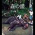 森の眼: スリランカの象使いと内戦の物語 (STEINBACH ノベルズ)