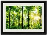 美しい森林、日の出、日光 (N024) 自然風景 壁掛け黒色木製フレーム装飾画 絵画 ポスター 壁画(40x60cm)