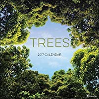 TF Publishing 171109 Wall Calendar 2017 Trees [並行輸入品]