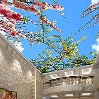 山笑の美 壁画壁紙フロアステッカーフレスコ画 注文の美しい青く白い居間のレストランの天井板-120X100CM