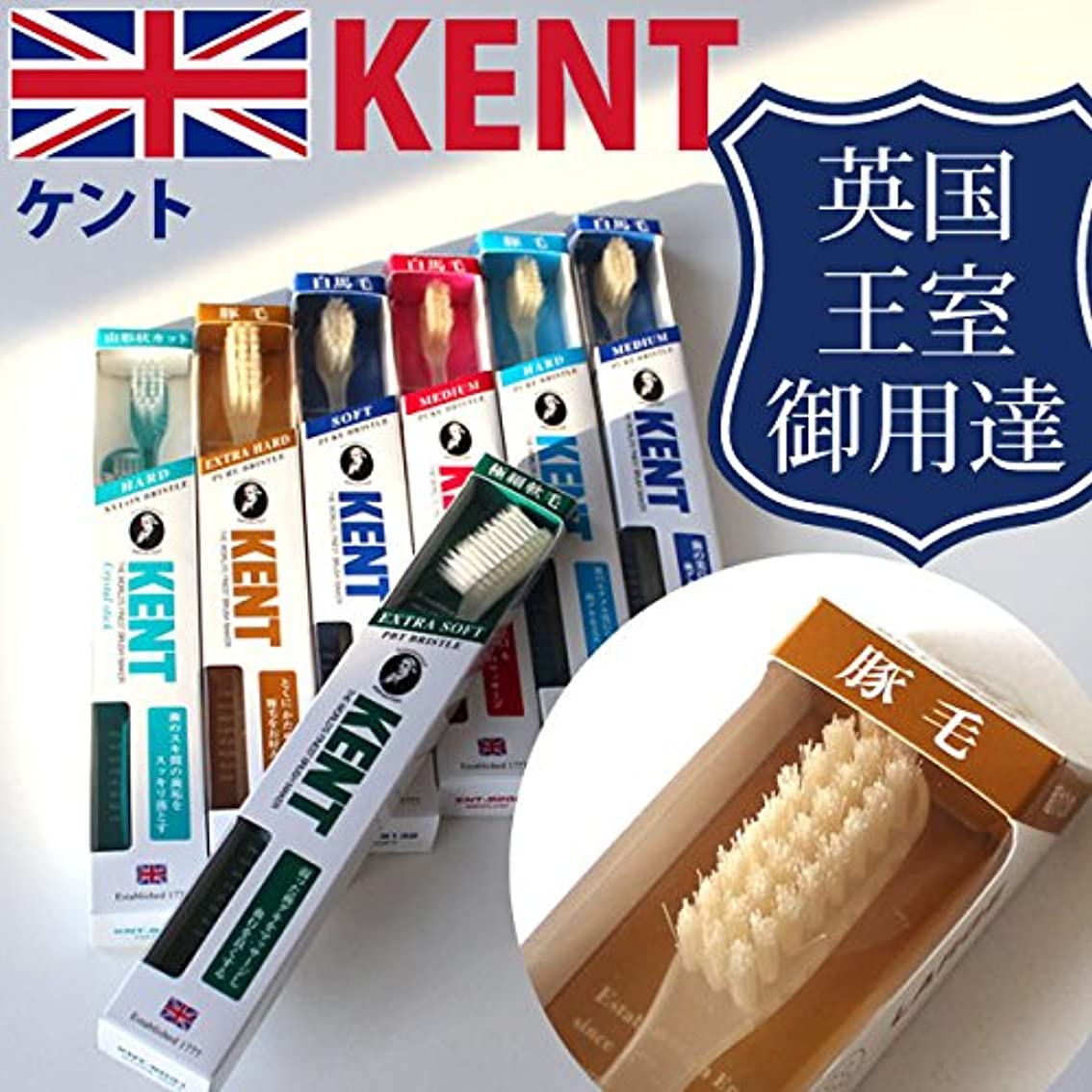 ボトルクラッチケント KENT 豚毛 ラージヘッド 歯ブラシKNT-9433 超かため 6本入り しっかり磨ける天然毛のラジヘ