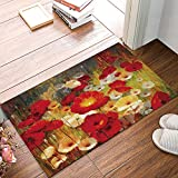 FAMILYDECOR Vintage Red Floral Door Mat Rugs, 20x31.5 Inch Indoor/Outdoor Non Slip Entrance Front Door Doormat for Bathroom/K