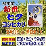 29年産 新米100% 特別栽培米 七夕コシヒカリ 10kg (5k×2袋) 佐賀産 さが こしひかり (白米精米(精米後約4.5k×2))
