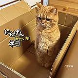 にんげんみたいなネコ (写真集)
