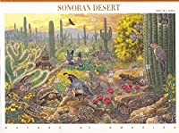 Postage Stamp US Scott 3293 Sonoran Desert Full Sheet of Ten 33 Cent Stamps by USPS [並行輸入品]