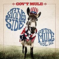 STONED SIDE OF THE MULE [12 inch Analog]