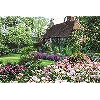 1000ピース ジグソーパズル 花園のコテージ(50x75cm)