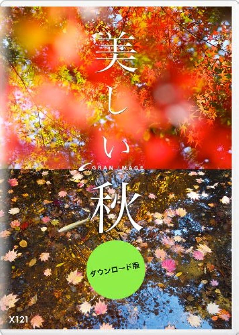 上下するライトニングホイップグランイメージ X121 紅の季節 [ダウンロード]