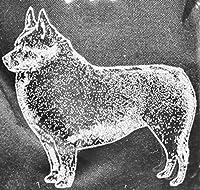 スキッパーキ犬レーザーエッチングGlassware Set COOL