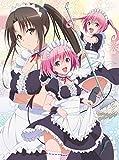 To LOVEる-とらぶる-ダークネス2nd 第4巻 (初回生産限定版) [Blu-ray]の画像