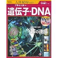 DVDで学ぶ人体 遺伝子・DNA (science factory 人体紀行)